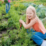 Laws about community gardens