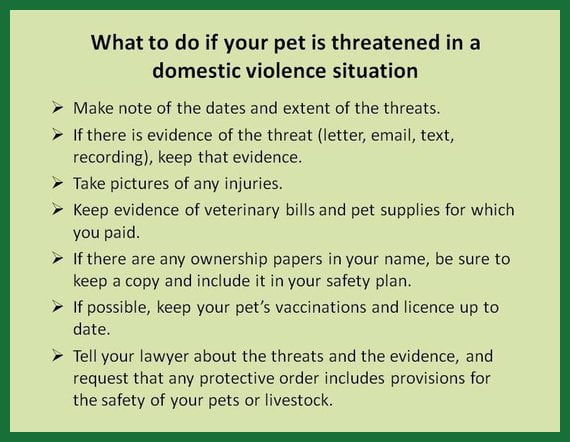 What to do if your pet is threatened in a domestic violence situation: Make note of the dates and extent of the threats. If there is evidence of the threat (letter, email, text, recording), keep that evidence. Take pictures of any injuries.Keep evidence of veterinary bills and pet supplies for which you paid. If there are any ownership papers in your name, be sure to keep a copy and include it in your safety plan. If possible, keep your pet's vaccinations and licence up to date. Tell your lawyer about the threats and the evidence, and request that any protective order includes provisions for the safety of your pets or livestock.