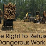photo of logging trucks and loaders