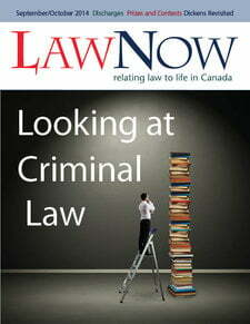 Cover: Looking at Criminal Law