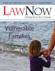 Cover: Vulnerable Families