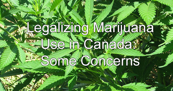 Legalizing Marijuana Use in Canada: Some Concerns