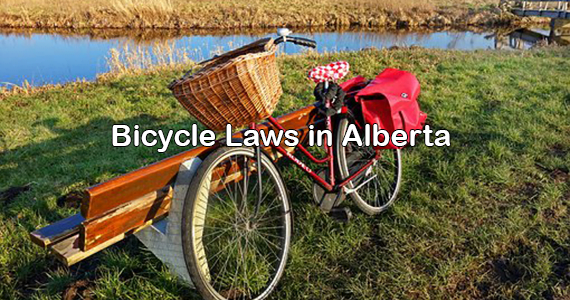 Bicycle Law in Alberta