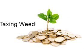 Taxing Weed