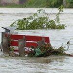 Liability of Volunteers in Natural Disaster Emergencies