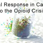 Legal Response in Canada to the Opioid Crisis